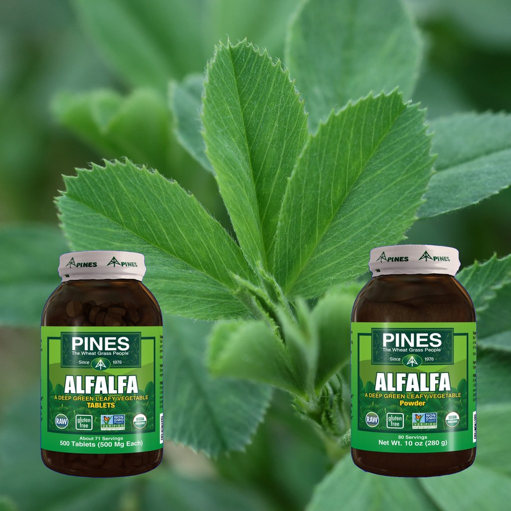 Alfalfa from Pines is the First Non-GMO Project Verified
