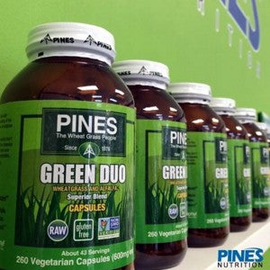 Pines GreenDuo at Pines in Pembroke Pines