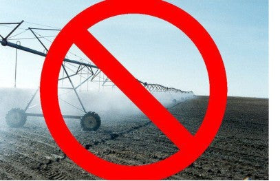 no irrigation