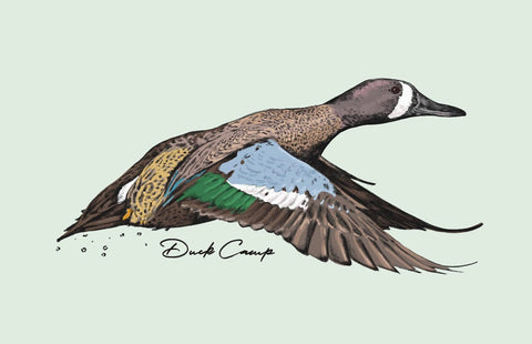 Teal Hunting Artwork