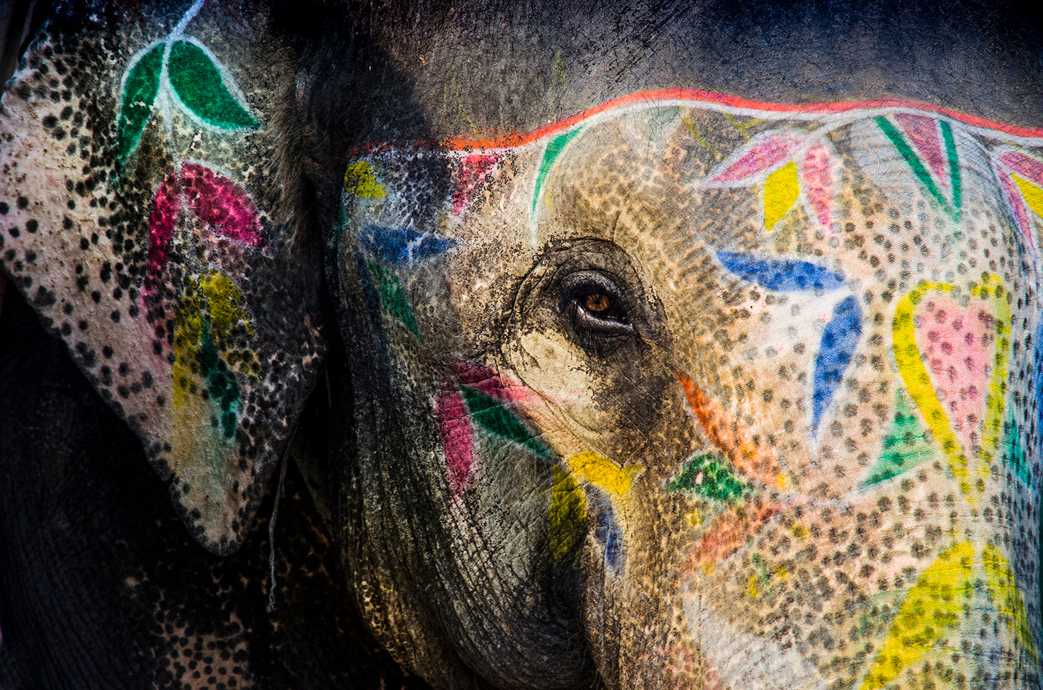 Painted Elephant l