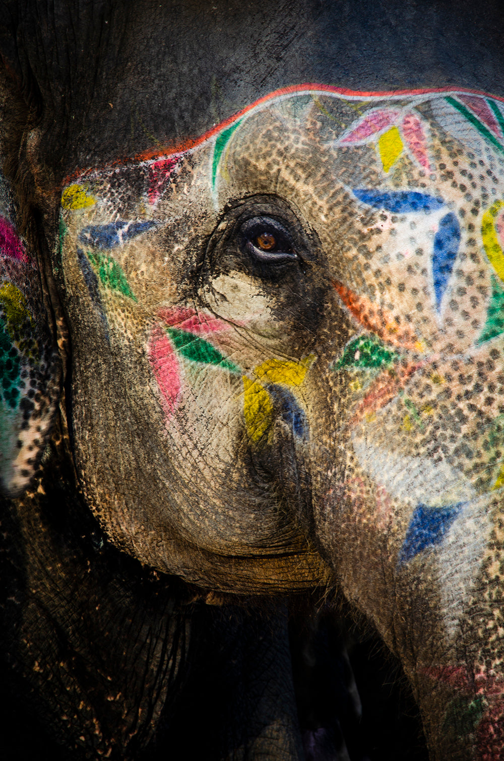 Painted Elephant ll