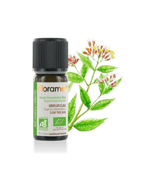 Clove Tree (bud) Organic Essential oil, 10 ml