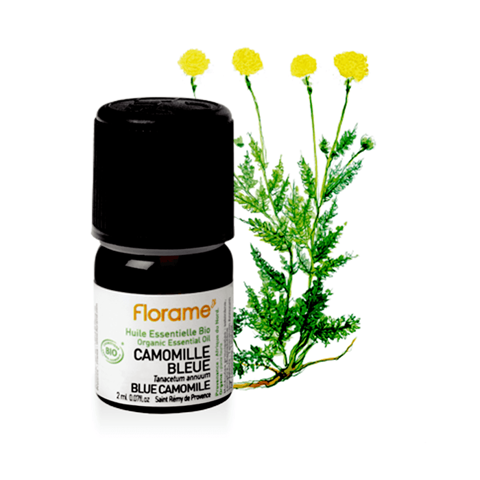 Organic Blue Camomile Essential Oil, 2 ml