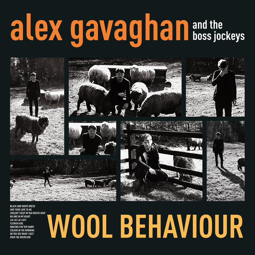 "Alex Gavaghan & The Boss Jockeys 'Wool Behavior"" Vinyl"