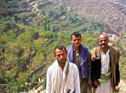 Yemeni Coffee Farmers