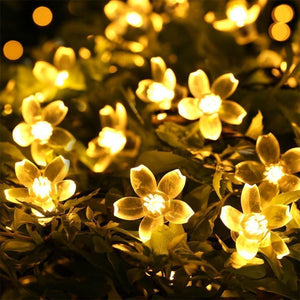 Solar LED Fairy String Lights