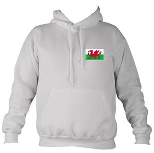 Welsh Dragon Flag Hoodie-Hoodie-Moondust grey-Mudchutney