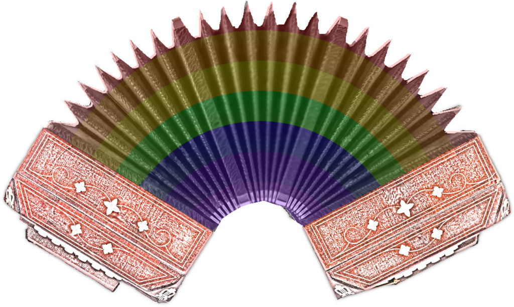 Rainbow Accordion T-shirt - T-shirt - - Mudchutney