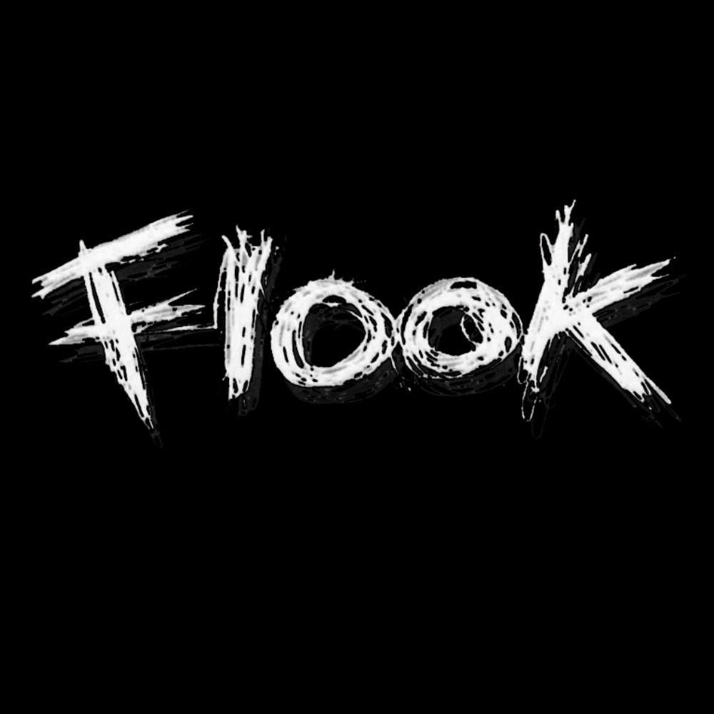 Flook T-shirt - T-shirt - - Mudchutney
