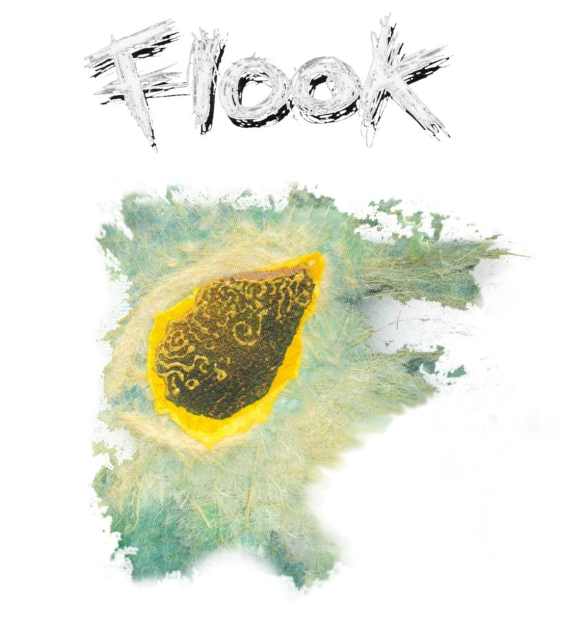 "Flook ""Haven"" Men's T-shirt - T-shirt - - Mudchutney"