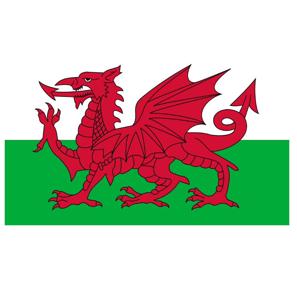Welsh Dragon Flag T-shirt - T-shirt - - Mudchutney