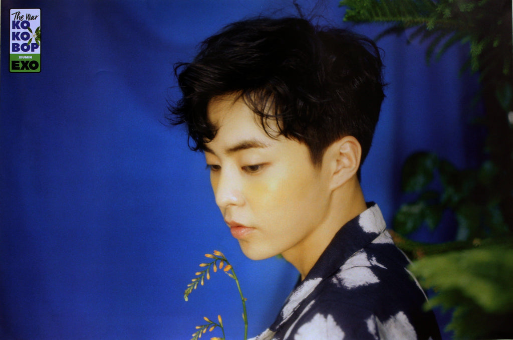 MUSIC PLAZA Poster Xiumin 엑소 | EXO | 4TH ALBUM - THE WAR /  Kokobop | POSTER ONLY