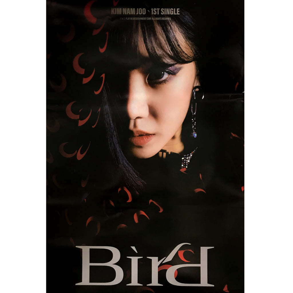 김남주 | KIM NAM JOO | 1ST SINGLE ALBUM [BIRD] | (VERSION C) POSTER ONLY