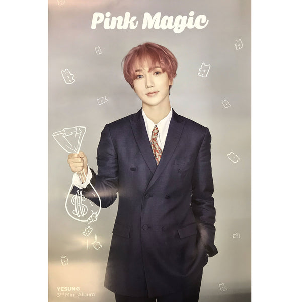 YESUNG | 예성 | PINK MAGIC | 3rd mini album | (version 2. gray) POSTER ONLY