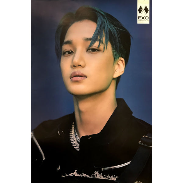 EXO | 6TH ALBUM [OBSESSION] | OBSESSION VERSION | (KAI) POSTER ONLY