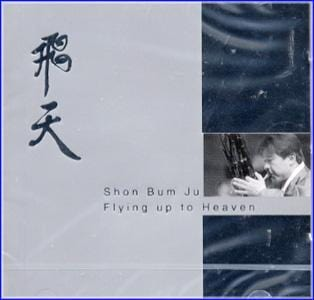 MUSIC PLAZA CD <strong>손범주 Shon, Bumju | 飛天/Flying up to Heaven</strong><br/>