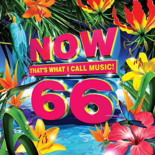 Now 66 (Various Artists)