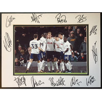 Tottenham Hotspur FC Mounted Action Team Photo – Multi Signed by Members of the 2017/2018 Squad