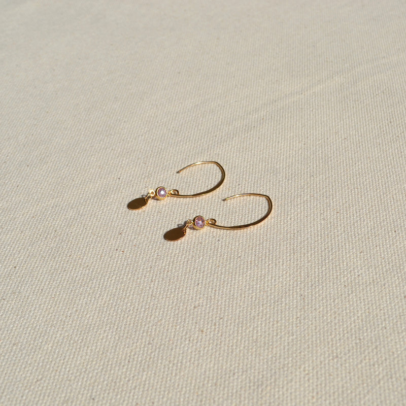 The Agra Hoops