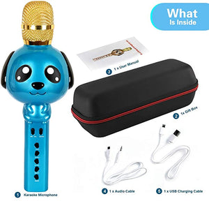 Karaoke Microphone Bluetooth Wireless Portable