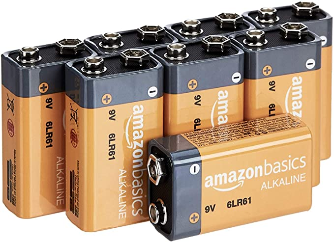 AmazonBasics Everyday Alkaline Batteries 8 Pack