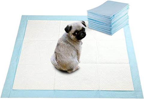 Buddy Super Absorbent Training Puppy
