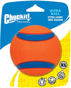 Chuckit Bounces Floats Bright Available
