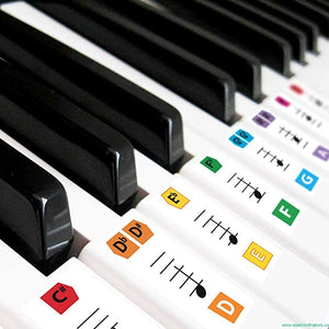 Reusable Keyboard Childrens Beginners Recommended