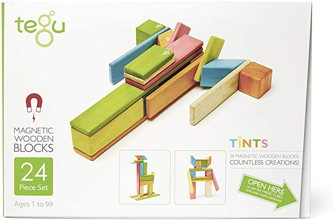 Piece Tegu Magnetic Wooden Block