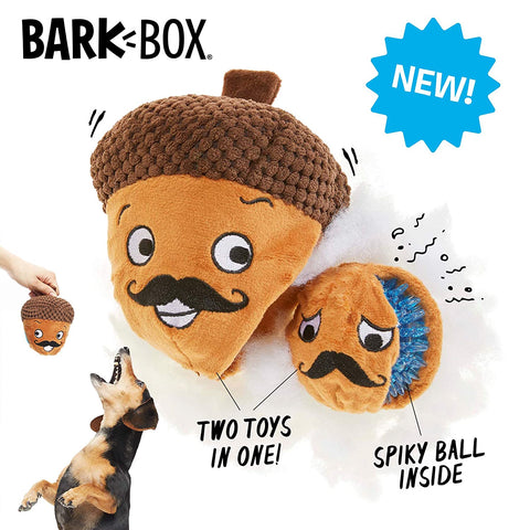 BarkBox Monsieur Acorn Small Within