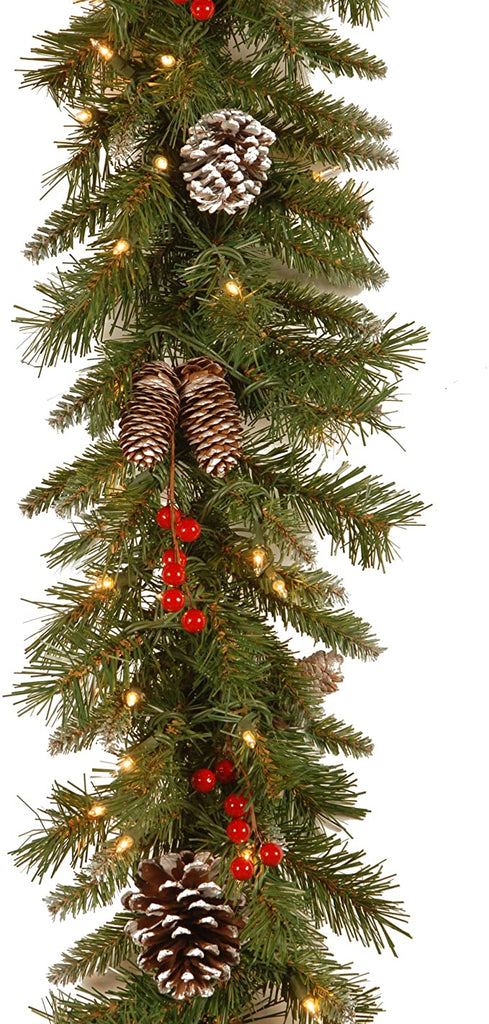 National Tree Frosted Garland FRB 9GLO 1