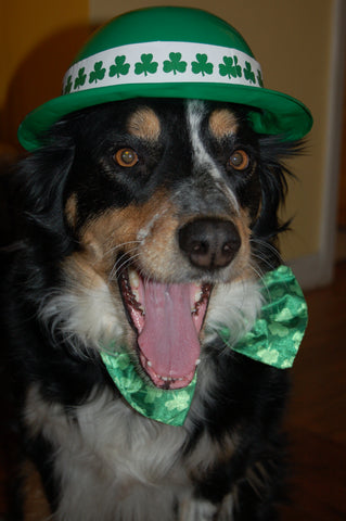 Celebrate Irish Heritage Happy St. Patrick's Day