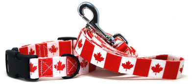 Canada flag dog collar and leash set