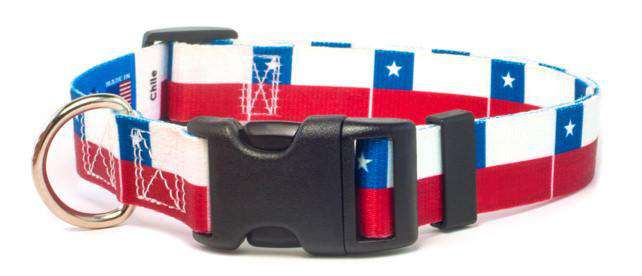Chile Flag Dog Collar | Chilean
