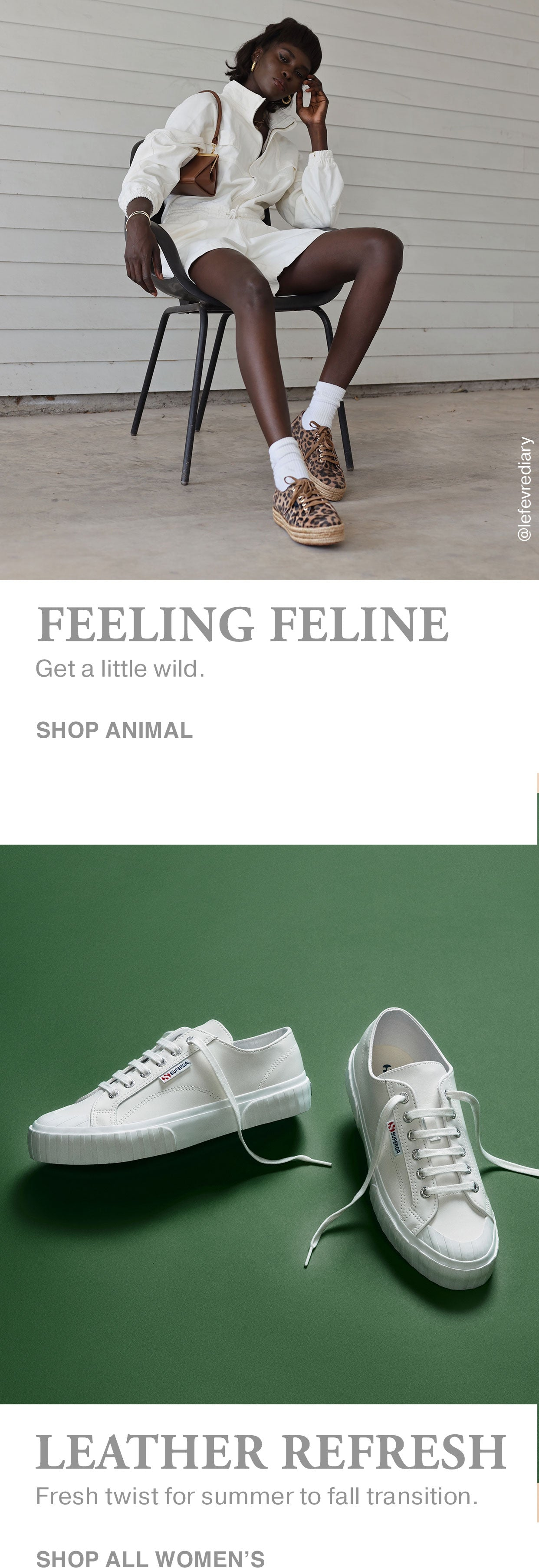 Leather Refresh Feeling Feline Banner Mobile