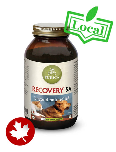 Purica - RECOVERY Regular Strength (Tablets) - {Wild Coast Pet Food}