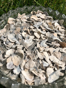 Pacific Pearl Oyster Shell - Bulk (1kg) - {Wild Coast Pet Food}