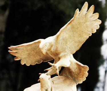 Rob Mangum hawk Sculpture