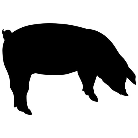 Feeding Pig Craft Stencil