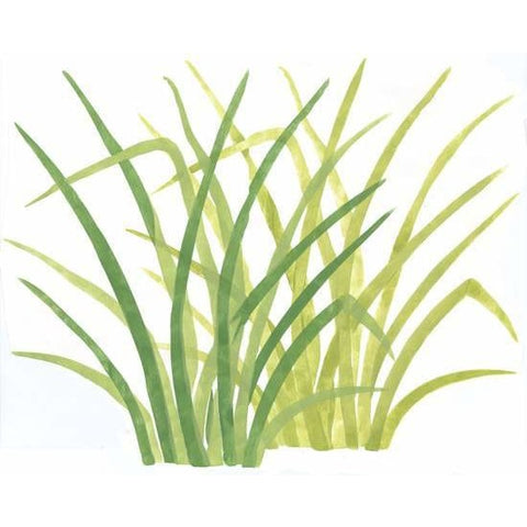 Rainforest Jungle Grass Wall Mural Stencil