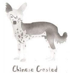 Chinese Crested Dog Mini Stencil