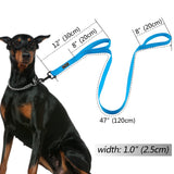Reflective Dog Harness Leash For Small, Medium, Large Dogs - World Pet - The Best Pet Store in US. Dog Cat Hamster Chinchila Parrot Parakeet Animals Pet Articles Supplies