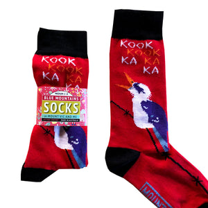 Blue Mountain Socks: Kookaburras