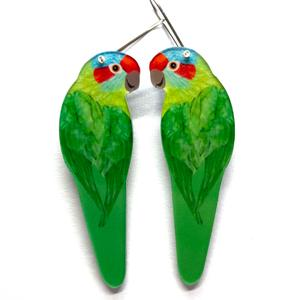 Smyle Designs - Musk lorikeet Earrings