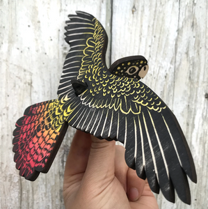 Bridget Farmer - Mobile - Red-tailed Black Cockatoo