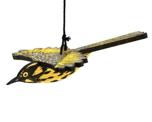 Bridget Farmer - Mobile - New Holland Honeyeater