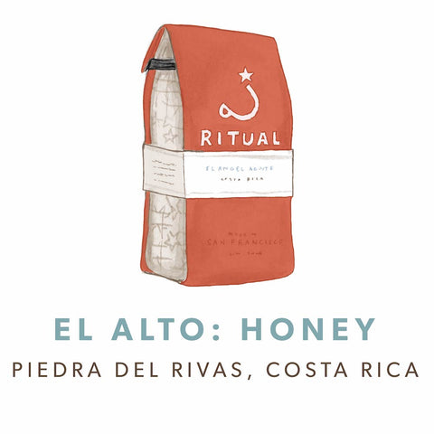 El Alto: Honey Process, Costa Rica