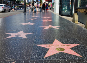 Visit Top Attraction in LA : Hollywood Walk of Fame