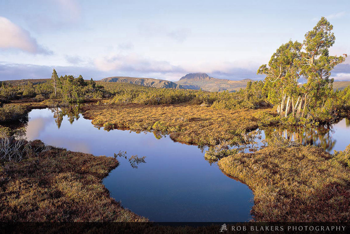 TM46 :: View to Cradle Mountain